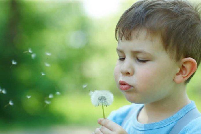 autismo,-dall'osservazione-in-classe-ai-gruppi-di-lavoro:-il-'servizio-scuola'-ido-aiuta-i-bambini